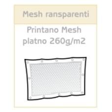 Mesh luknjičast PVC transparent